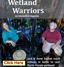 wetland warrior magazine