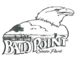 bald point logo