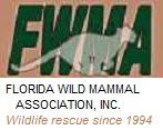 FWMA Logo with Rescue